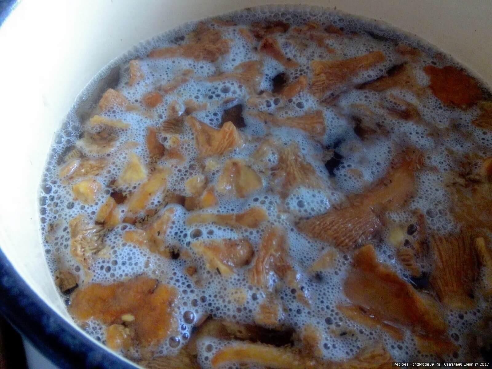 Грибы помыть, отварить в подсоленной воде. Откинуть на дуршлаг, дать стечь воде