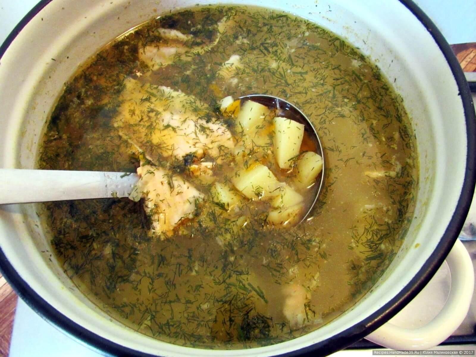 Затем выложить в суп мясо лосося и мелко порезанный укроп, лавровый лист. Посолить и поперчить суп по вкусу. Дать супу прокипеть ещё 5 мин, и суп готов