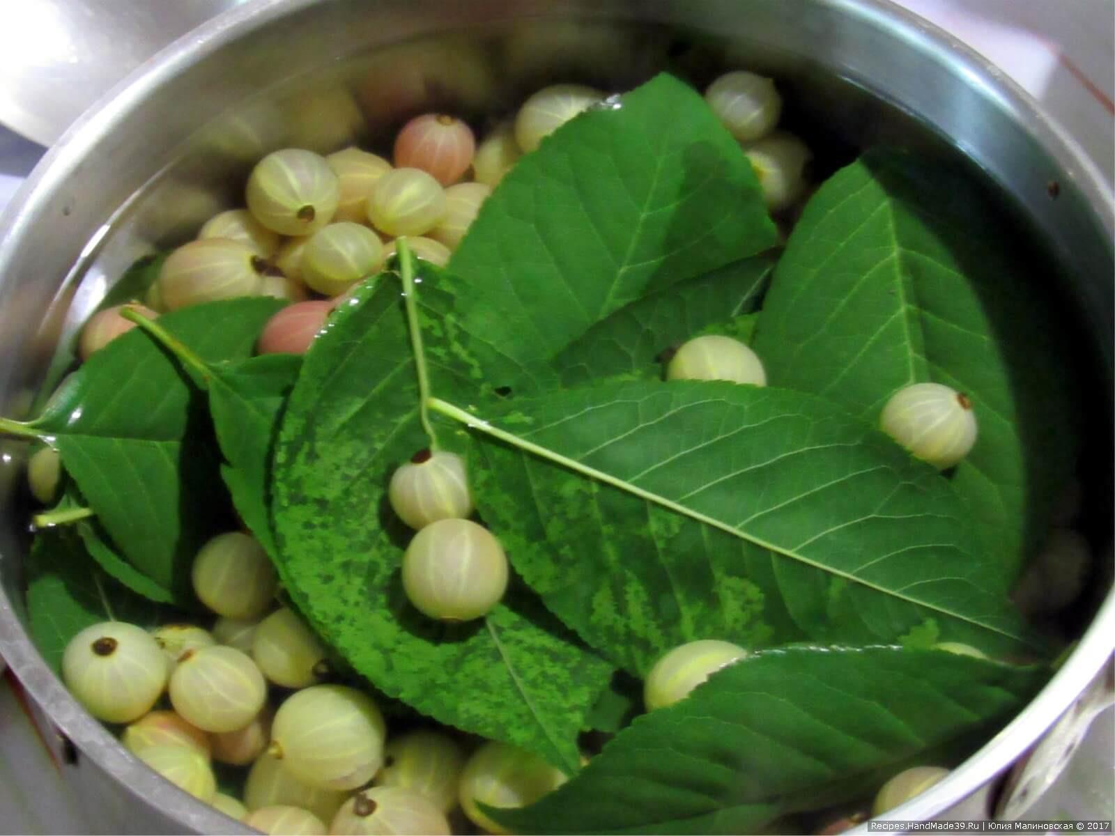 Сложить в миску ягоды и листья, залить крутым кипятком так, чтобы покрыть их сверху. Оставить остывать на 6 часов