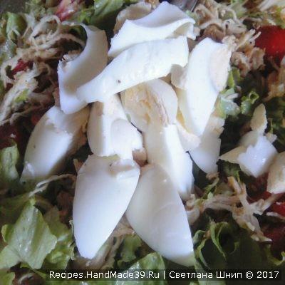 Соединить листья салата, кусочки куриного мяса, натёртый пармезан, порезанное на дольки варёное яйцо, помидоры