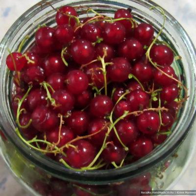 Затем промытые ягоды красной смородины вместе с веточками