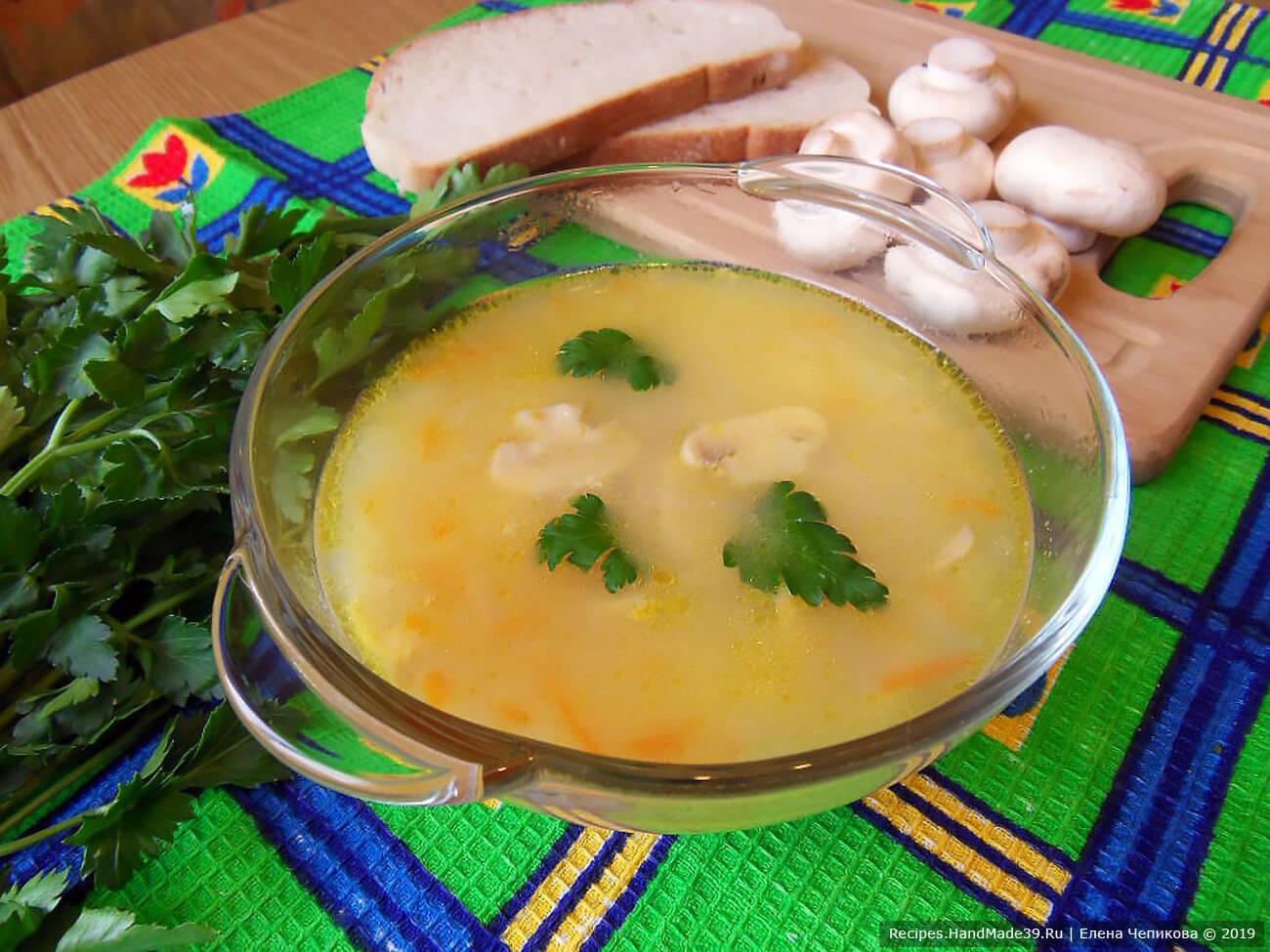 Готовый грибной сырный суп на мясном бульоне поперчить и подавать с зеленью. Приятного аппетита!