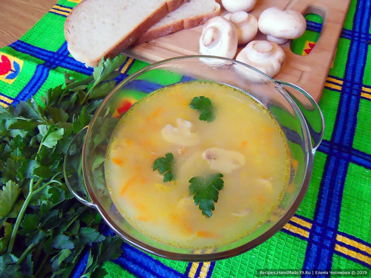 Грибной сырный суп на мясном бульоне