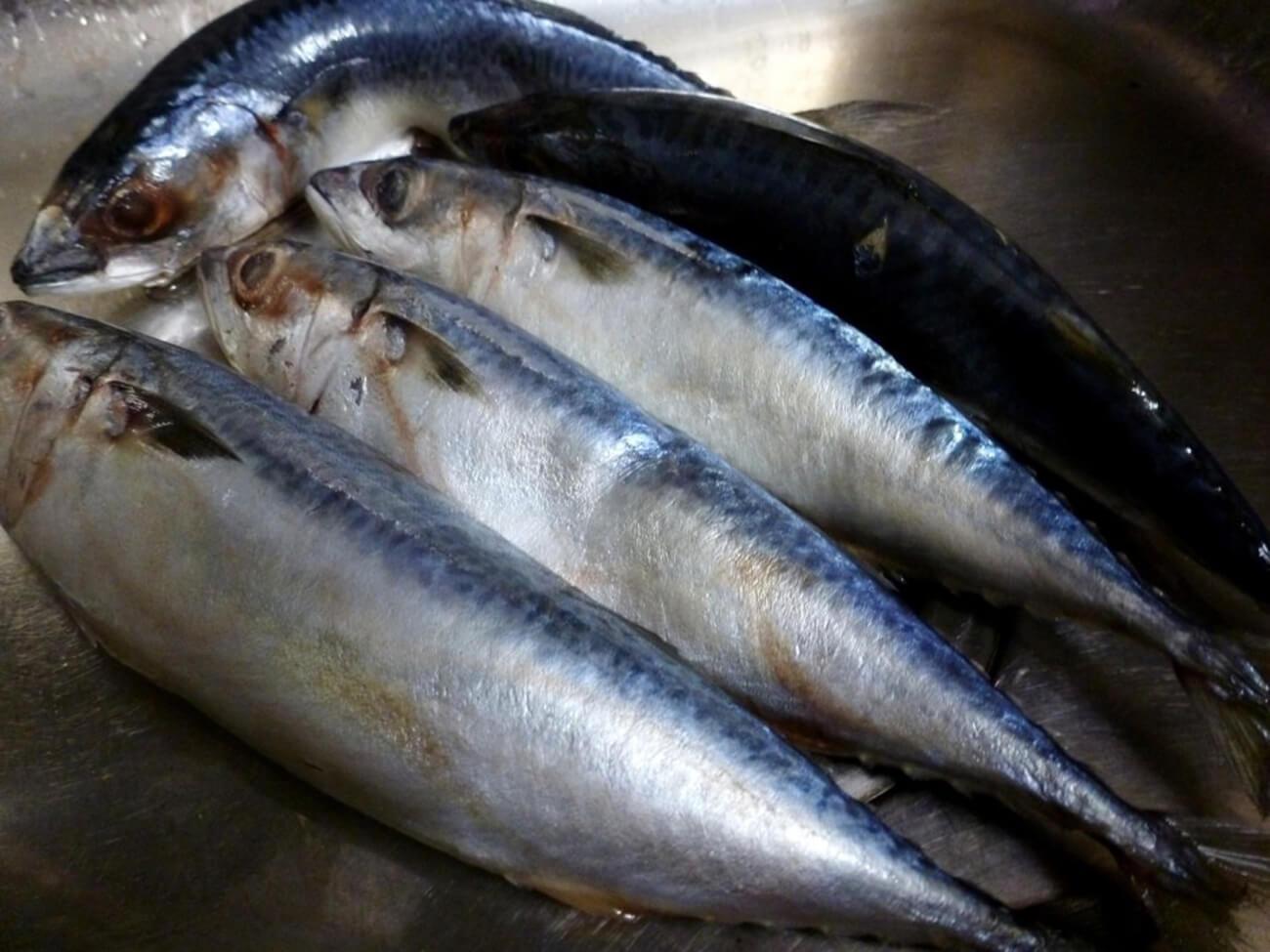 Рыбу хорошо помыть, солиться рыба будет целиком