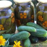Хрустящие маринованные огурцы – классический рецепт