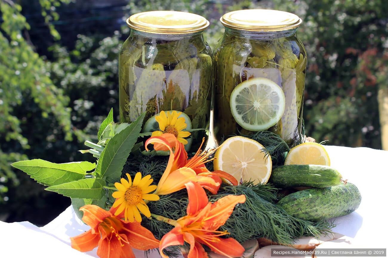 «Пражские» огурцы с лимоном без уксуса