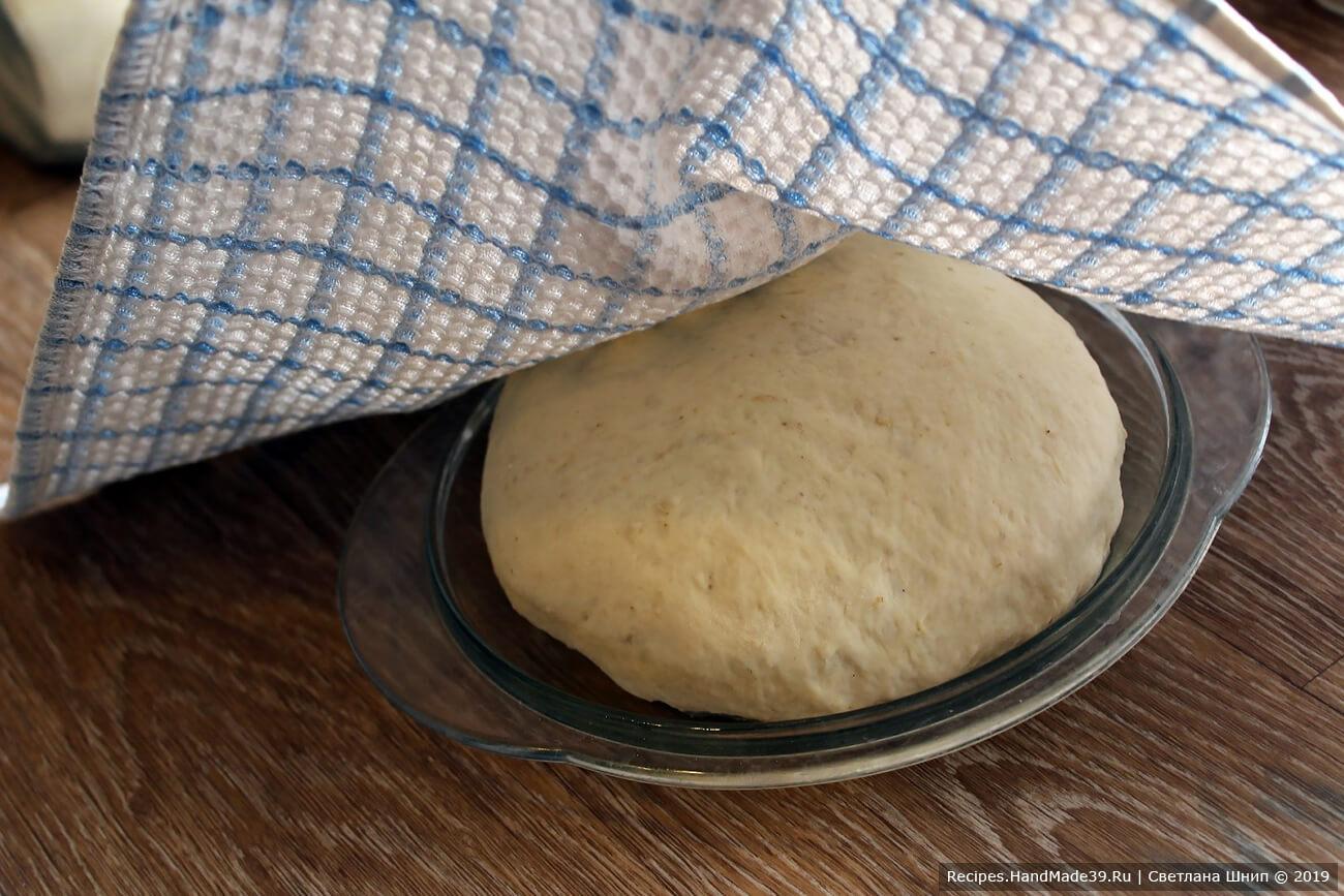 Придать тесту круглую форму, переложить в форму для выпечки, смазанную растительным маслом. Накрыть полотенцем и оставить на 30-50 минут в тёплом месте