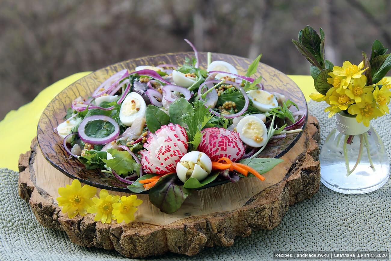 Как приготовить норвежский салат с сельдью и редисом