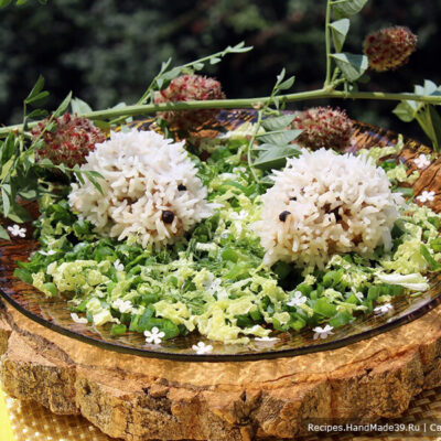Мясные тефтели ёжики с рисом в пароварке – пошаговый рецепт с фото